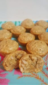 Coconut Oatmeal Mini Muffins